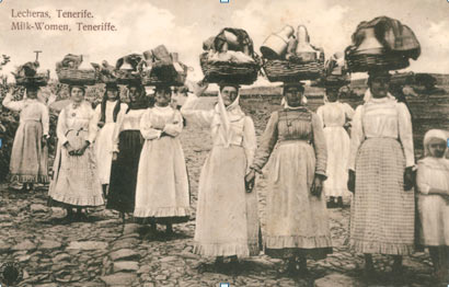 Canarian milkmaids
